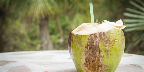 Minyak Kelapa Saat Ini ini manfaat minum air kelapa saat