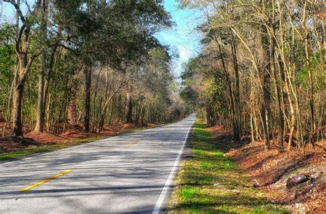 free photo south carolina landscape scenic free image