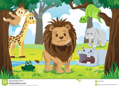 imagenes reino animal reino animal ilustraci 243 n del vector ilustraci 243 n de