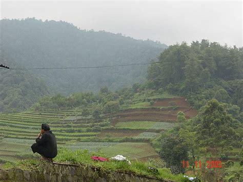 wallpaper animasi pemandangan alam wallpaper pemandangan pemandangan alam pegunungan