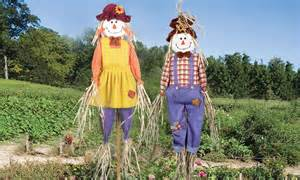 Indoor Garden Solutions - scarecrow twin pack from 15 99 in pest control telegraph shop