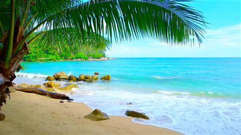 imagenes zen playa playas ex 243 ticas sonido dreamscenes y wallpapers fondos