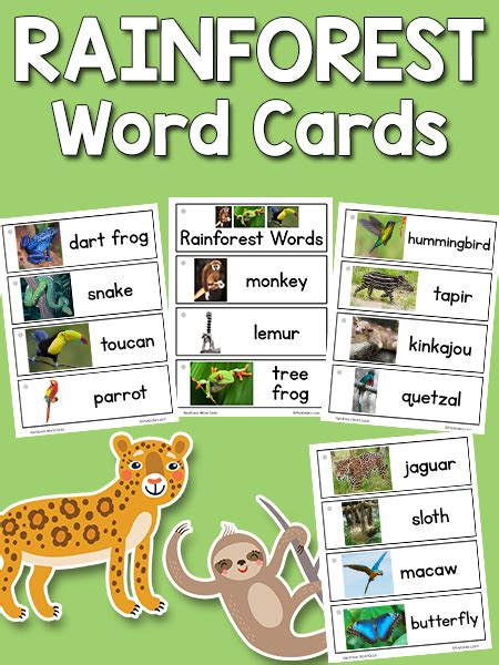 printable rainforest animal cards rainforest word cards prekinders