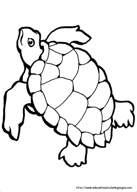 printable ocean animal coloring sheets ocean coloring pages free for kids