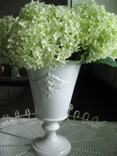Can You Cut Hydrangeas For A Vase by Hydrangeas Aren T Just For Bouquets Anymore Wenderly