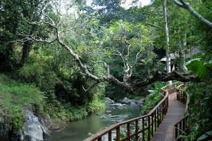 Ubud and Its Philosophy, Bali