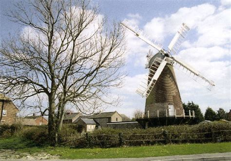animal farm new windmills reader anfarm willingdon downs