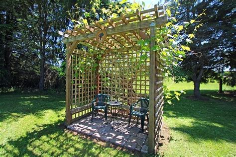 backyard vineyard design grape arbor designs grape arbor plans grape trellis diy