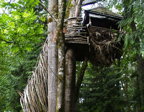 the nest a wood tree house suspended 23 ft the