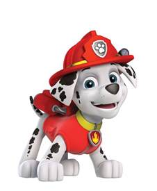Girls Wall Stickers 35 best paw patrol pics images on pinterest paw patrol