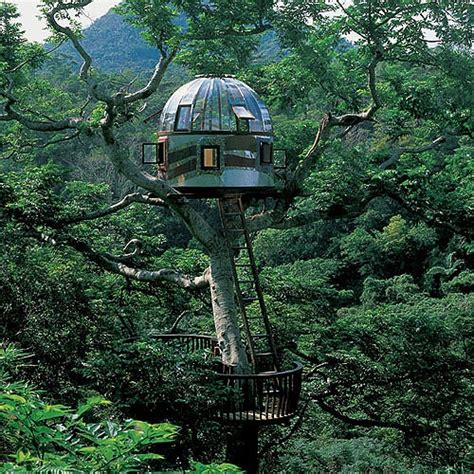 tree houses around the world dream like a child 10 fantasy treehouses around the world