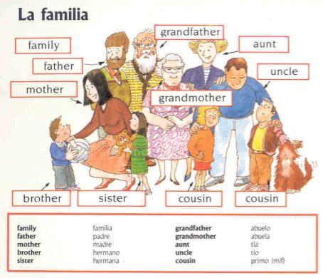 imagenes de la familia en ingles temas para ni 241 os