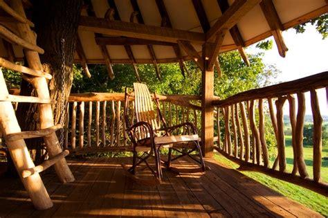 Veranda Tree by Tree House Tropical Veranda Philadelphia By Hugh