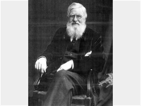 Alfred Russel Wallace Biografi alfred russel wallace biography birth date birth place and pictures