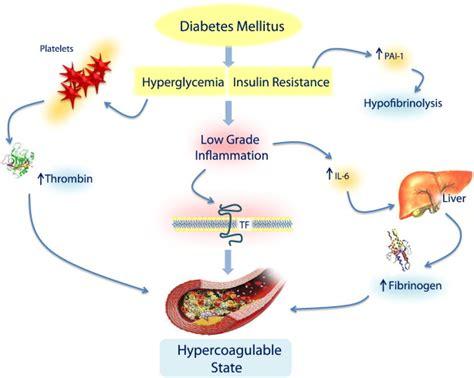 how do dogs get diabetes diabetes mellitus type 1 nursing interventions salemfreemedclinic diabetes