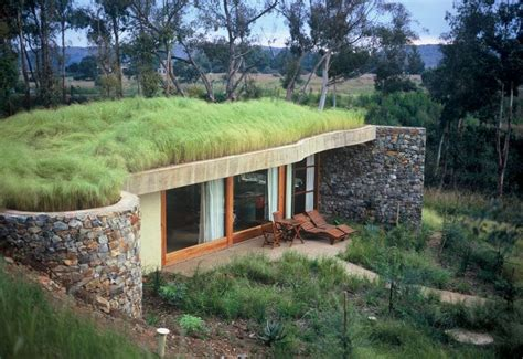 22 best images about green roof on pinterest cherries