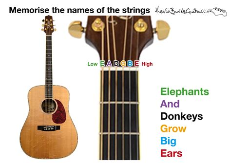 String Names - learn the names of the guitar strings