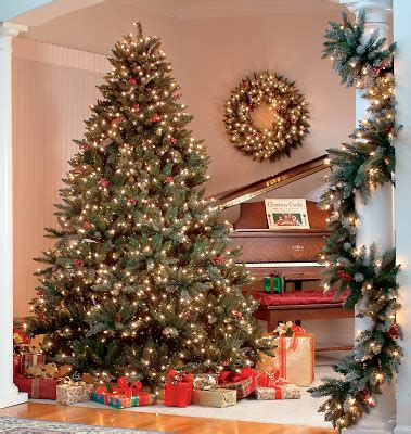 28 best webb ranch christmas trees quail creek ranch