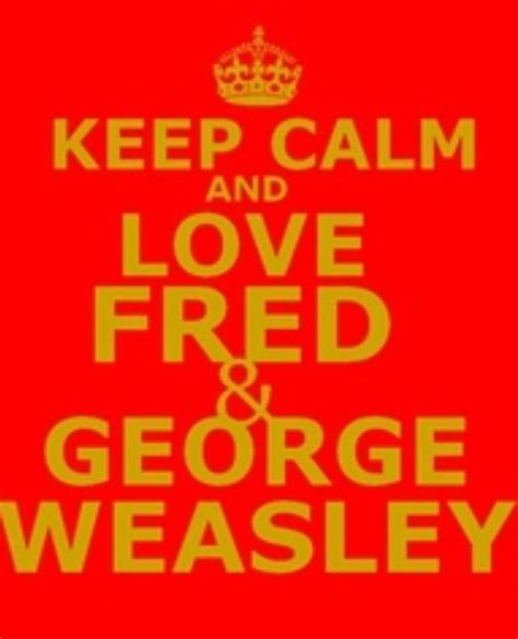 keeping it from harry a comedy books 259 best images about fred and george weasley on