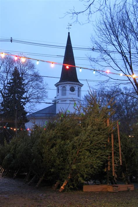 file follen church christmas tree lot east lexington ma