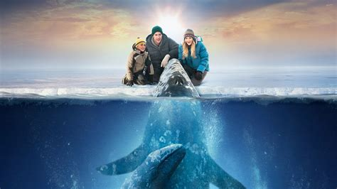 Miracle Free Hd Big Miracle Wallpapers Hd Wallpapers Id 10678