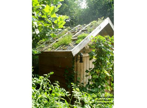 Garden Shed Roof by Greenroofs Projects Ancaya Green Roof Garden Shed