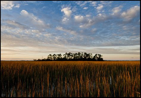 scapes south carolina photographer o brien