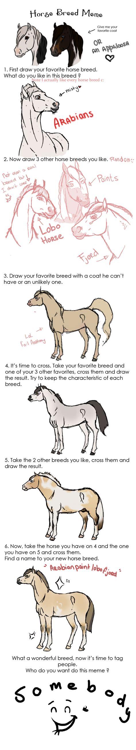Soon Horse Meme - funny horse owner memes
