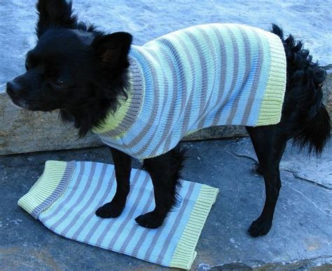 Strickanleitung Hundepullover Chihuahua by Hundepullover Stricken 42 Warme Ideen Strickanleitung