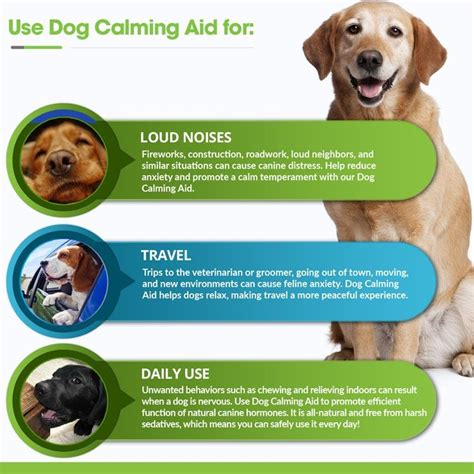 dogs aid buy calming aid for dogs anxiety relief particular paws
