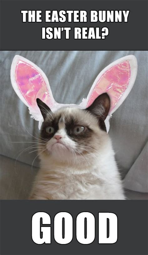 Funny Happy Easter Memes - 42 best images about grumpy cat easter on pinterest