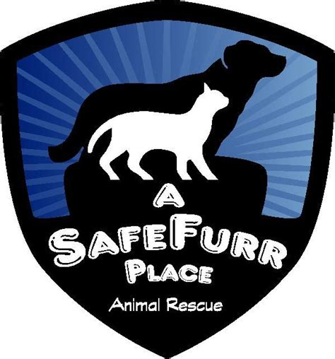 bakersfield shelter a safefurr place animal rescue pet shelter in bakersfield ca