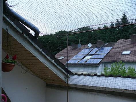 hängematte auf balkon befestigen katzen forum balkon sicherung sichtschutz oder netz