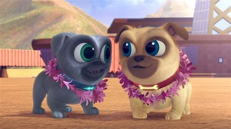 pug puppies hawaii puppy pals an adorable new show for preschoolers my boys and their toys