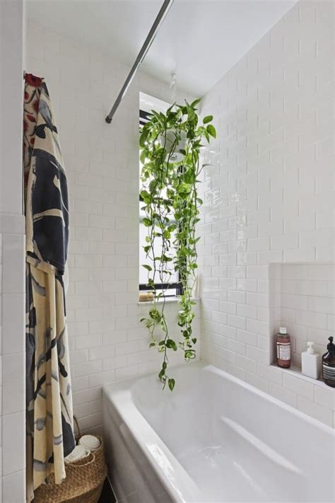 small bathroom design ideas popsugar home uk