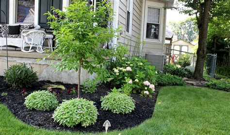 simple backyard landscaping ideas on a budget simple landscaping ideas on a budget