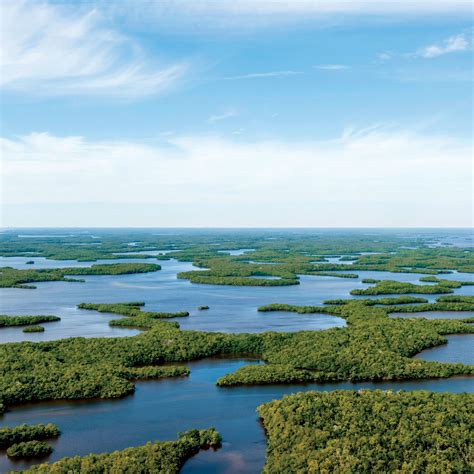 Coastal Living Home Plans exploring florida s everglades coastal living