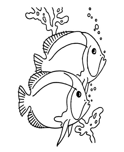 free coloring pages tropical fish coloring pages tropical fish coloring home
