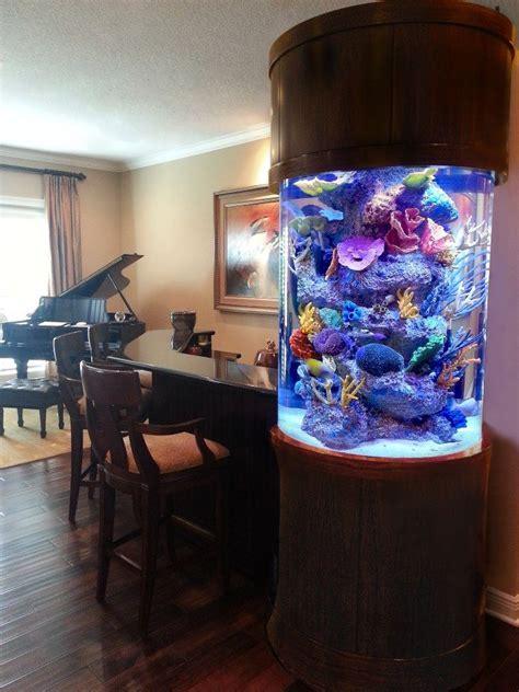 aquarium design san diego this custom cylinder aquarium is built into a bar surround