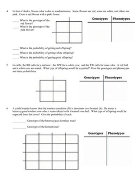 Dihybrid Cross Practice Worksheet by Worksheets Dihybrid Punnett Square Worksheet Opossumsoft