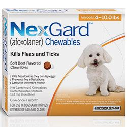 nexgard chewables for dogs nexgard for dogs buy nexgard for dogs at lowest price in us canadapetcare