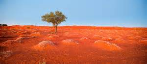 Iron Man Wall Mural red dirt of the australian bush 45 land photographs