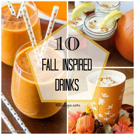 10 Tasty Mixed Drinks For Fall by 10 Delicious Fall Inspired Drinks Copa Y Bebida