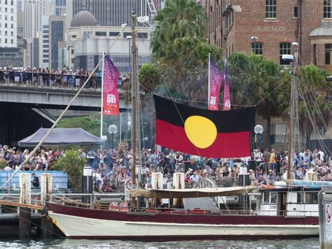 catamaran hire sydney rose bay australia day boat hire to enjoy the celebration on sydney