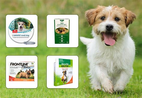 best shoo for fleas and ticks pet supplies pet health care products petcaresupplies