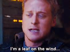 alan tudyk leaf on the wind gif mine nathan fillion firefly serenity alan tudyk
