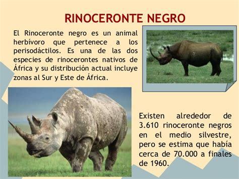 es un gnero con alrededor de 110 especies de la familia de las animales en peligro de extinci 243 n