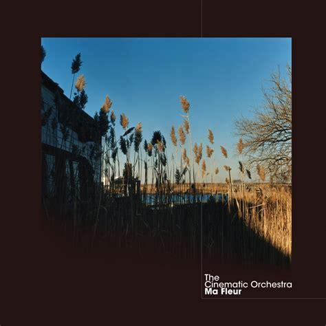ma fleur the cinematic orchestra release tune