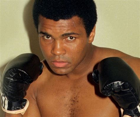 muhammad ali biography wikipedia image gallery mohamed ali boxer biography