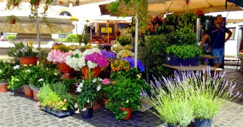 ci di fiori roma mercati di roma co de fiori